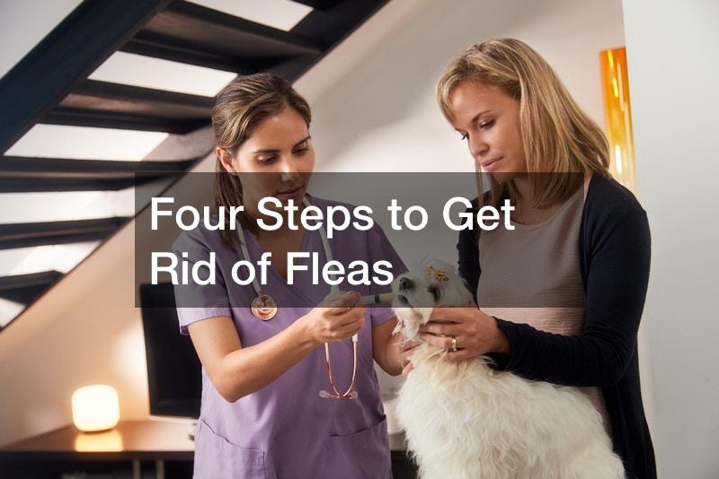 fleas removal